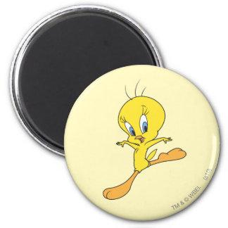 Tweety Landing Magnet