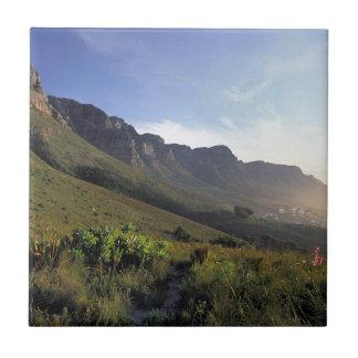 Twelve Apostles, Cape Town, Western Cape Tile