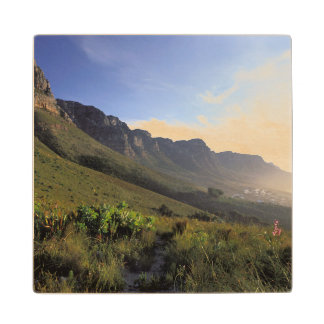 Twelve Apostles, Cape Town, Western Cape Wood Coaster