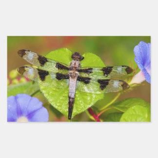 Twelve-spotted Skimmer Rectangular Sticker