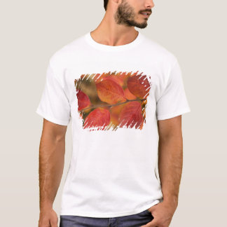 Twig covered with autumn leaves T-Shirt