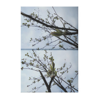 Twig in light green gallery wrap canvas