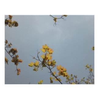 Twig in yellow photo print