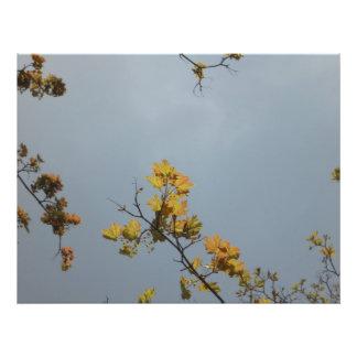 Twig in yellow photo print