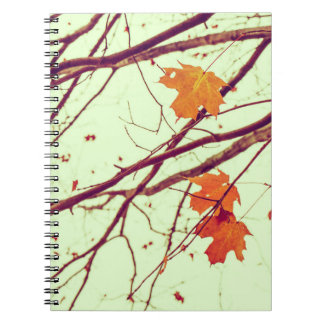 Twigs in Autumn Note Book