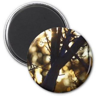 Twilight branches refrigerator magnet