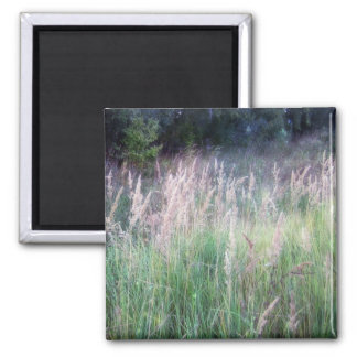 Twilight Forest Grass Glow Magnets