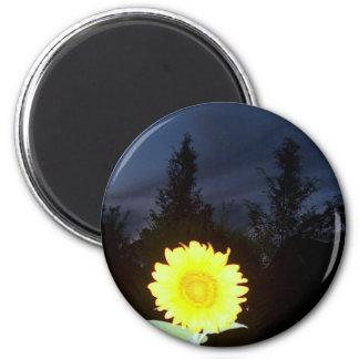 Twilight Sunflower Magnet