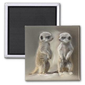 Twin baby Meerkats Square Magnet