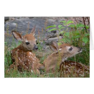 Twin Bambi Card