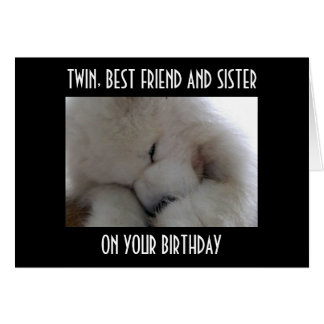 TWIN, BEST FRIEND AND SISTER ON YOUR BIRTHDAY LOVE GREETING CARD