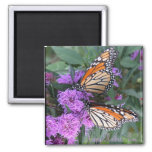 Twin Butterflies/ Happy Mother's Day Square Magnet