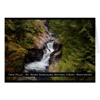 Twin Falls Card
