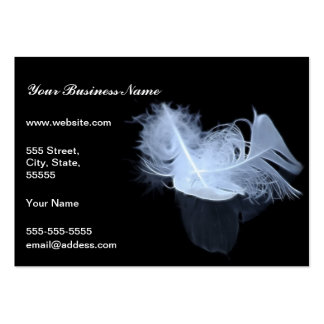 Twin flame feathers and reflection pack of chubby business cards