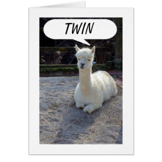 TWIN-LLAMA TELLS NO ONE HAS A BETTER TWIN THAN ME GREETING CARD
