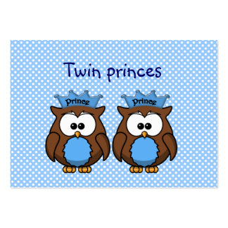 twin owl princes pack of chubby business cards