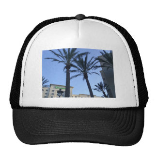 Twin Palms Hats