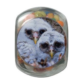 Twin Peeps Glass Candy Jars