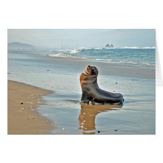 Twin Rocks Sea Lion Card