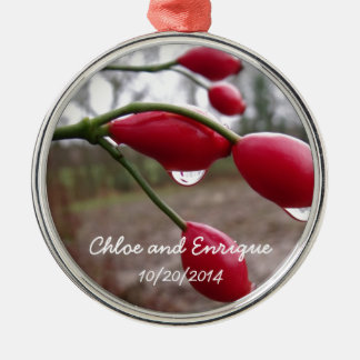 Twin Rose Hips And Rain Personalized Wedding Christmas Ornament