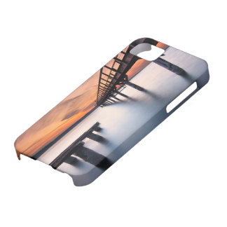Twin Spits iPhone 5 Case