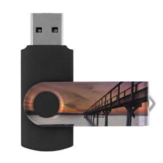 Twin Spits Swivel USB 2.0 Flash Drive