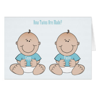 Twins Funny Congratulations Card