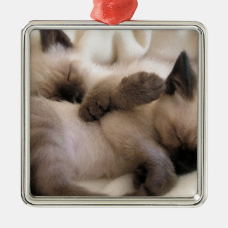 Twins Pet Cat Cute Siamese Kitten Christmas Ornament