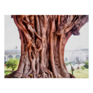 Twisted gnarled tree poster