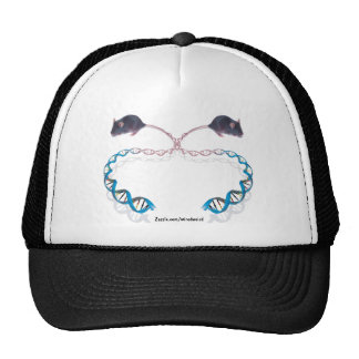 Twisted Tales Hat