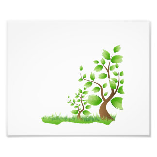 two abstract trees right corner eco design.png photographic print