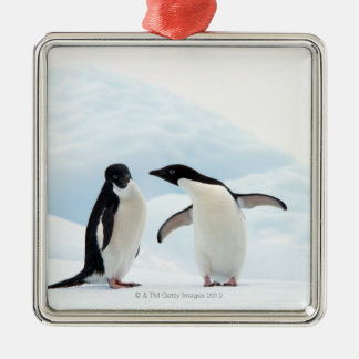 Two Adelie Penguins sitting on a sheet of ice Christmas Ornament
