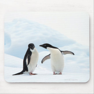 Two Adelie Penguins sitting on a sheet of ice Mouse Mat