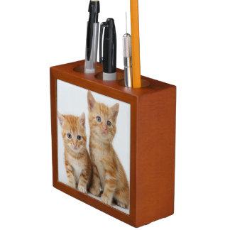 Two Adorable Kittens Desk Organiser
