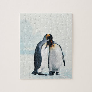Two affectionate penguins jigsaw puzzle
