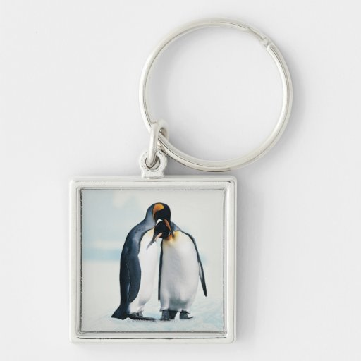 Two affectionate penguins keychains