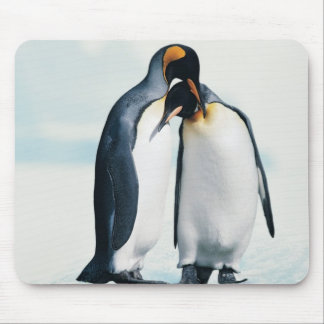Two affectionate penguins mouse mat