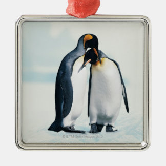 Two affectionate penguins Silver-Colored square decoration