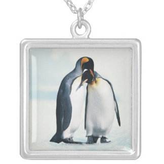 Two affectionate penguins silver plated necklace