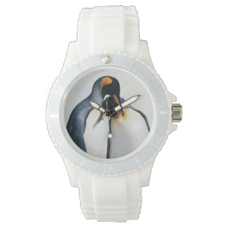 Two affectionate penguins watch