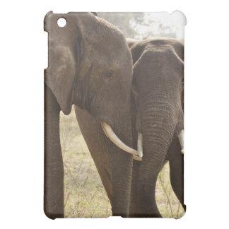 Two African Bush Elephants (Loxodonta Africana) iPad Mini Case