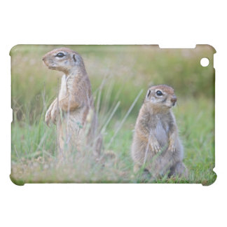 Two alert Ground Squirrels, Jamestown District, iPad Mini Cases
