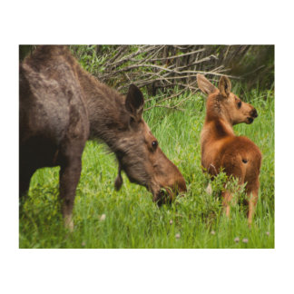 Two Alert Moose Mother And Baby Wood Wall Art