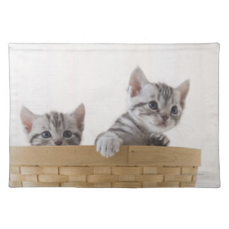 Two American Shorthair Kittens Placemat