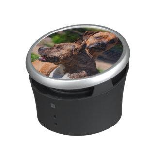 Two American Staffordshire Bluetooth Speaker