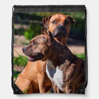 Two American Staffordshire Drawstring Bag