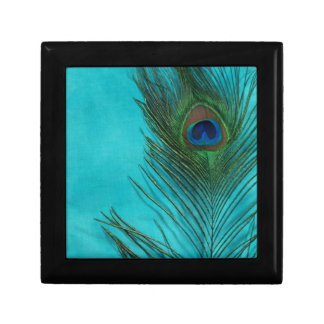 Two Aqua Peacock Feathers Gift Box