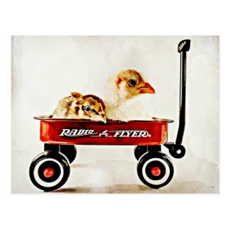 Two Baby Chicks in Red Wagon Postcard