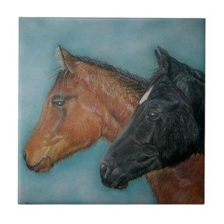 Two baby horses black foal chestnut foal portrait ceramic tile