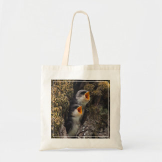 Two Baby Tree Swallows Budget Tote Bag